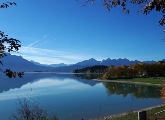 Forggensee im Herbst mit den Alpen im Hintergrund
